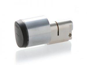 XS4 GxA | AUSTRALIAN oval cylinder